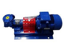 North Ridge FIG90CL Close Coupled Internal Gear Pump with Extended Gear Length and 90° Flange Connections