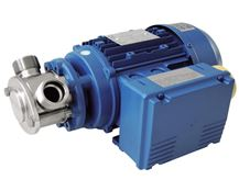 North Ridge Miniverter Flexible Impeller Pump